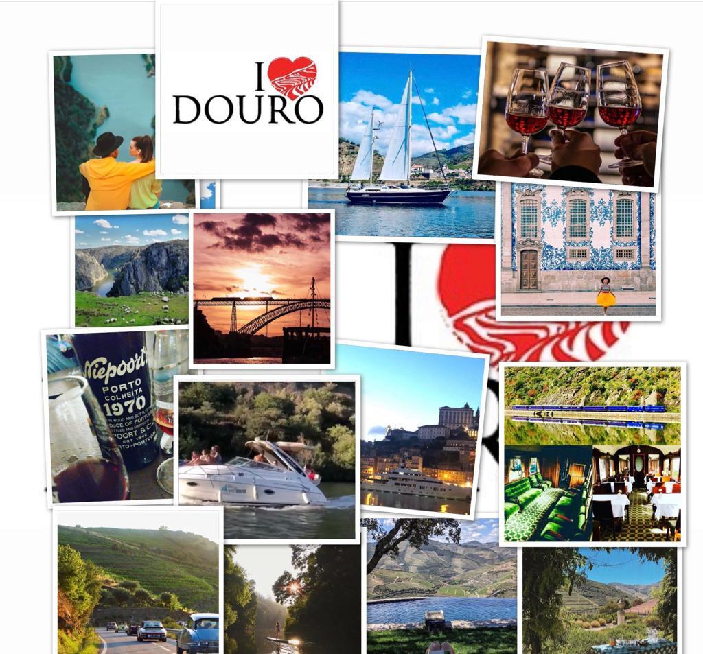 10 or more reasons to visit Douro